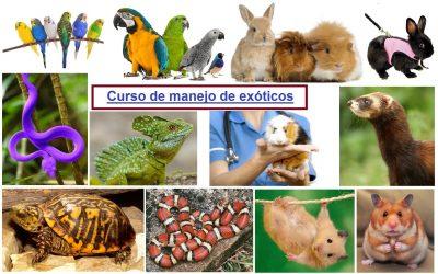 MANEJO DE ANIMALES EXÓTICOS